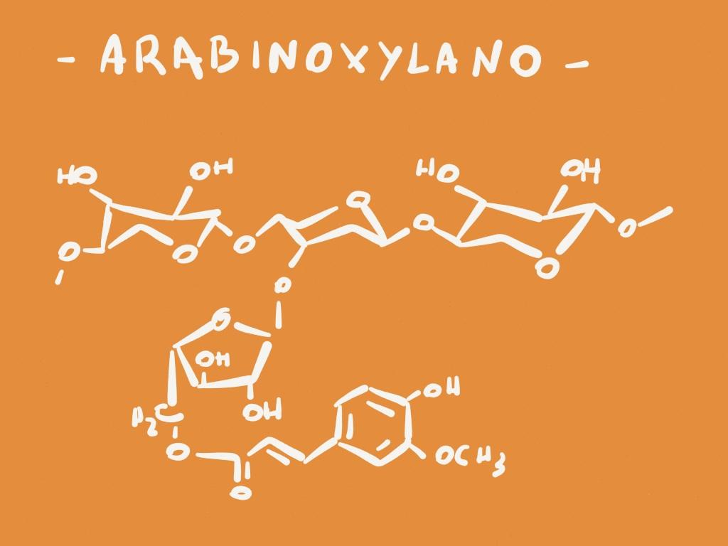 arabinoxylano