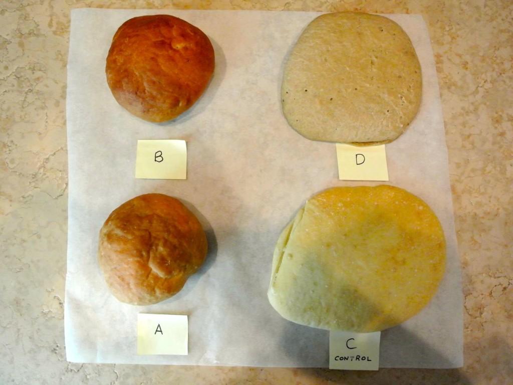 impasto pane fibra mais fibra patata