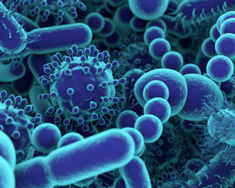 microbiome food