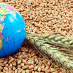 climate change global food