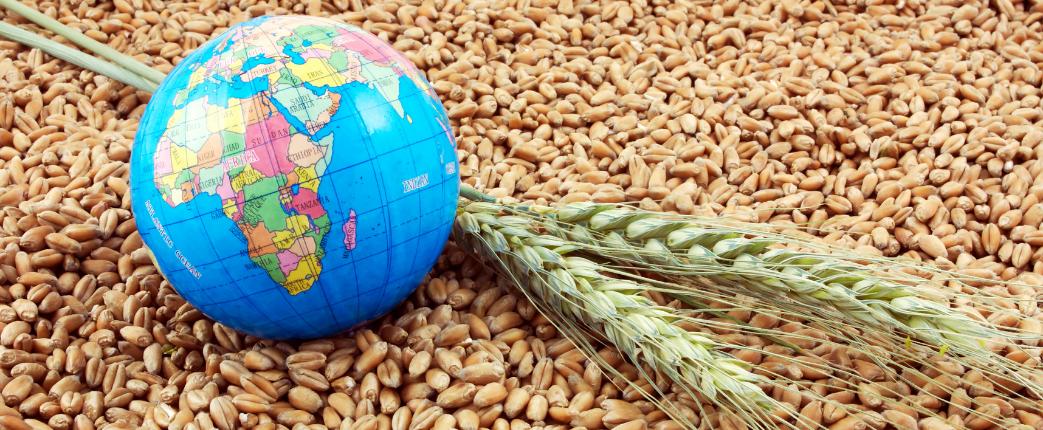 climate change global food