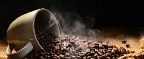 coffee liver