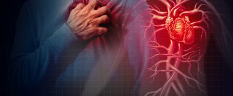 red meat heart disease