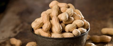 arachidi e nutrizione